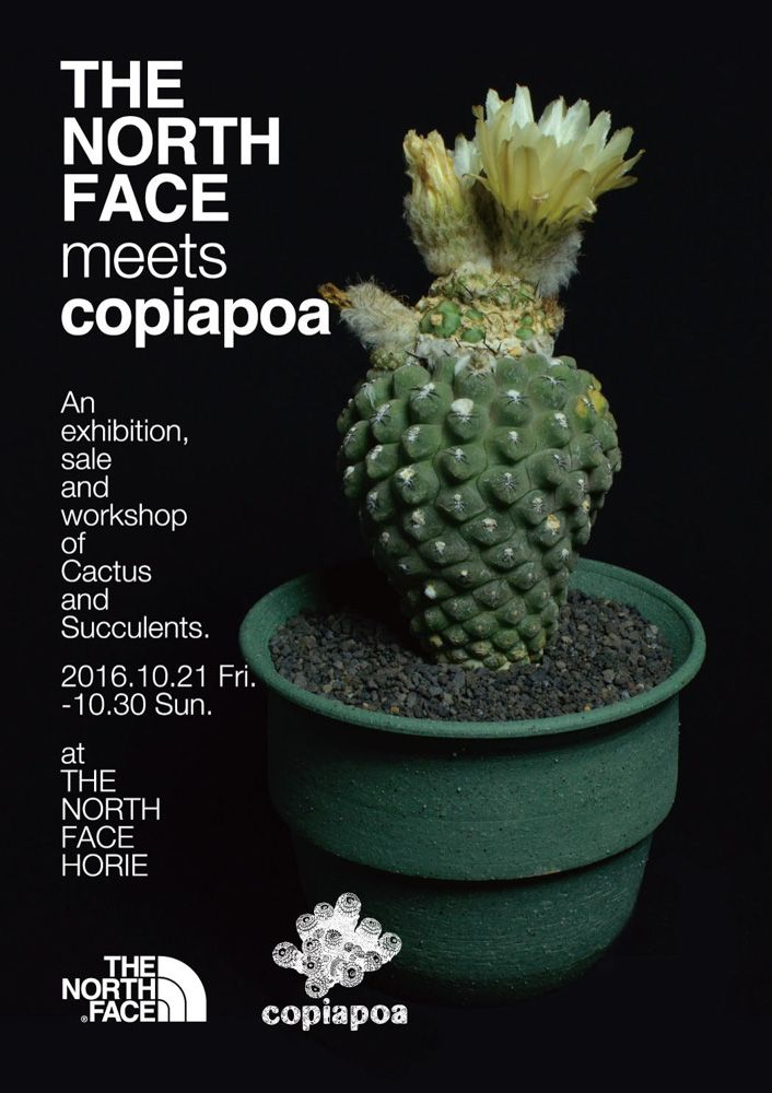 【 THE NORTH FACE meets copiapoa 】